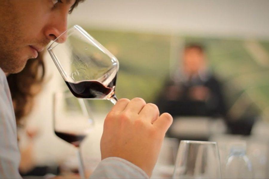 Wine tasting experience Event